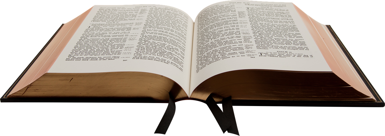 Community Bible Reading at Trinity
